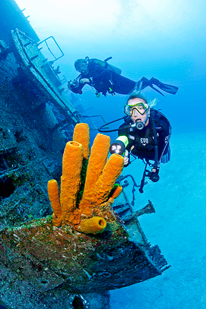 Diving Cayman Islands Packages